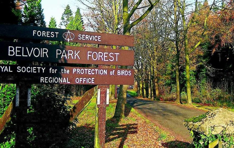 Belvoir Forest Park The Irish News