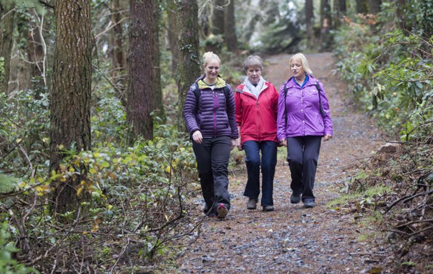 Weekend walk: Castlewellan Forest Park Cypress Pond
