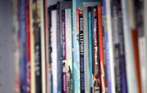 NIPSA warns closures looming for libraries