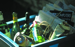 Anita Robinson: All this household recycling is doing my head in