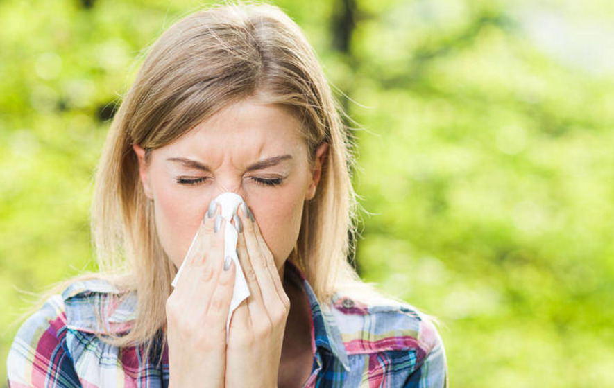 Pollen tips hay-fever sufferers can count on