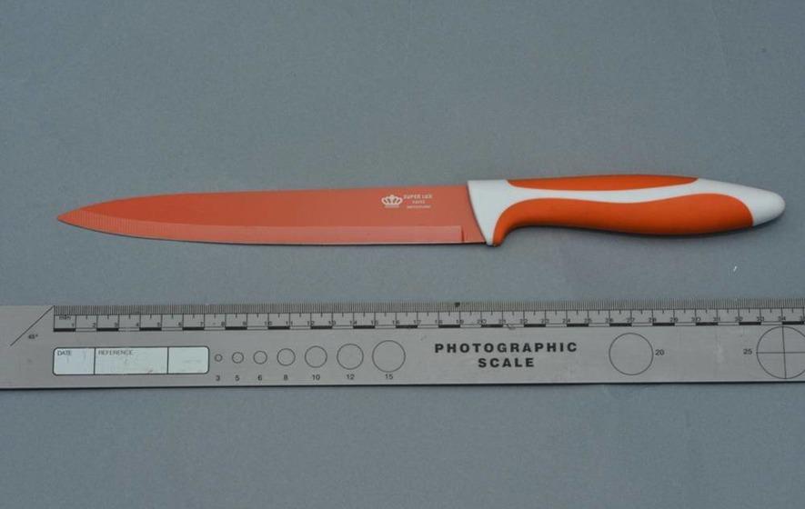 Knife used in Dornan murder sold 'door to door'