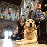 Paws for prayer for Guide Dogs at Belfast Cathedral