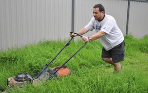 Gardening: Ten things to do this week