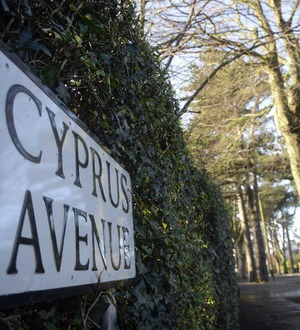 Morrison caught one more time up on Cyprus Avenue