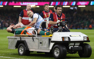 Paul O'Connell's Ireland career ended by World Cup injury