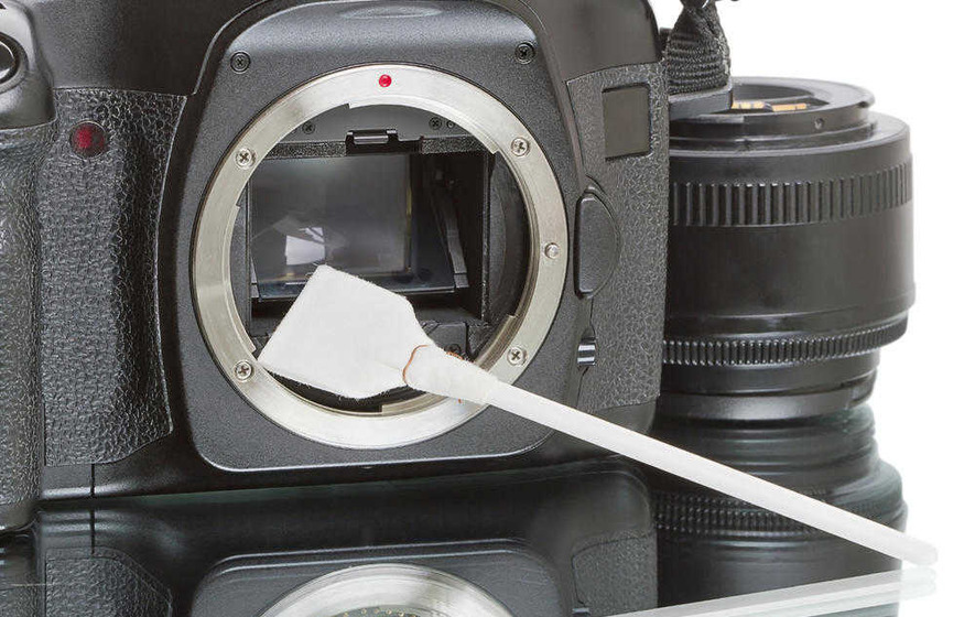 Netting a Bargain: Snap up a great photography freebie