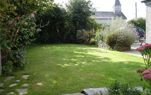 The Casual Gardener: Do the graft now for a healthier lawn