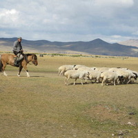 From Ulster to Ulaanbaatar – is Mongolia the new Qatar?