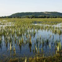 Lough Erne gets £3m for wildlife and tradition