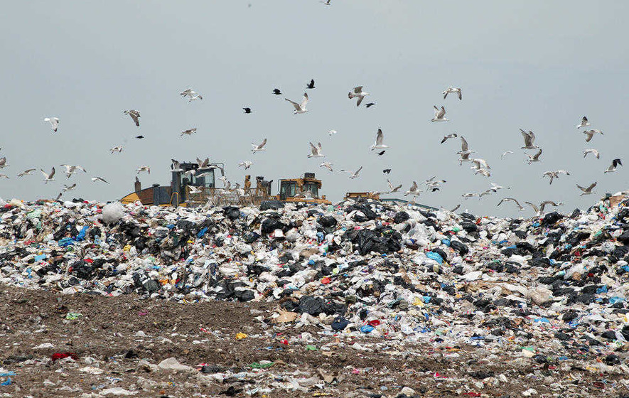 New report reveals less rubbish going to landfill