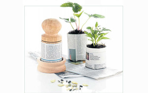 The Casual Gardener: Christmas gifts for the green-fingered