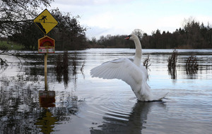 'Extra €10 million needed' in Republic to deal with aftermath of flooding